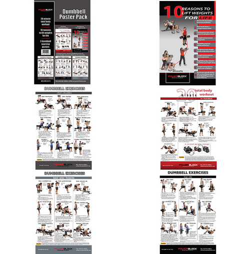 DUMBBELL WORKOUT POSTERS